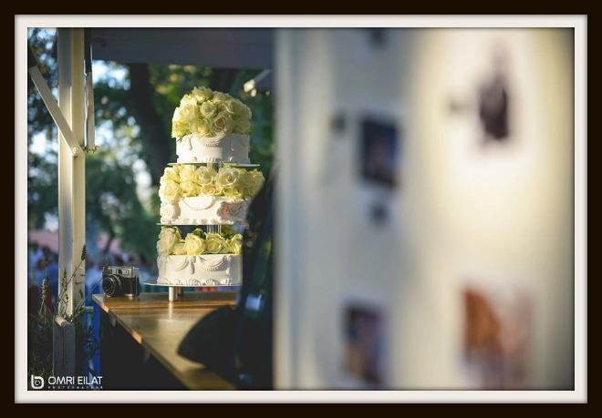 חתונה בטבע עם עוגת חתונה